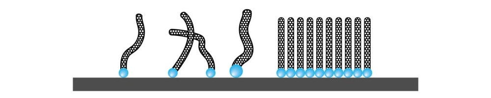 chemical vapor deposition nanotube synthesis