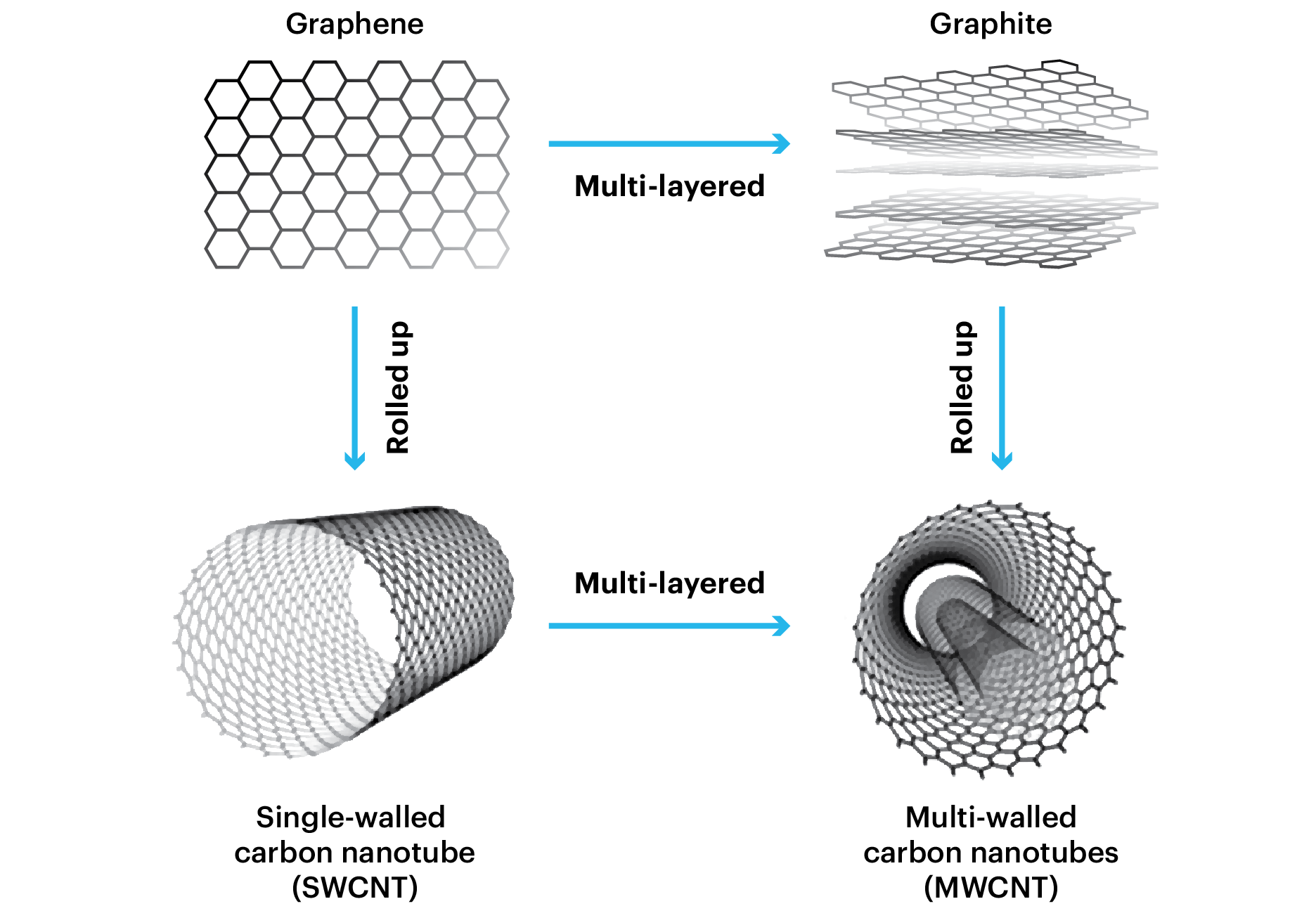 differences between single-walled and multi-walled carbon nanotubes